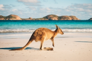 Australia Quiz Questions and Answers